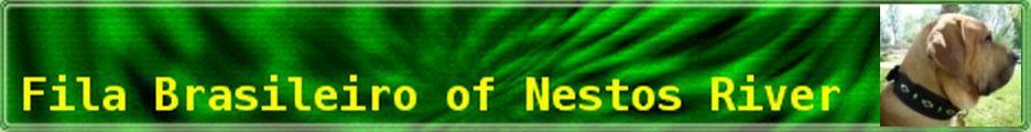 http://filabrasileiros.klack.org/bilder/banner1.jpg